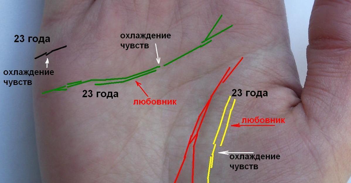 линии брака на руке значение в картинках номенклатуры это справочник
