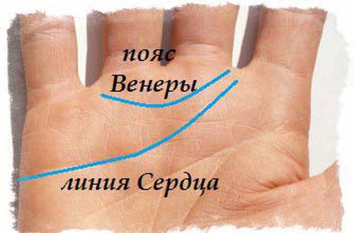 Расшифровка сердечной полосы