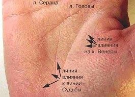 Различные линии влияния на руке