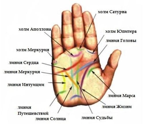 Основные и вспомогательные знаки на руке