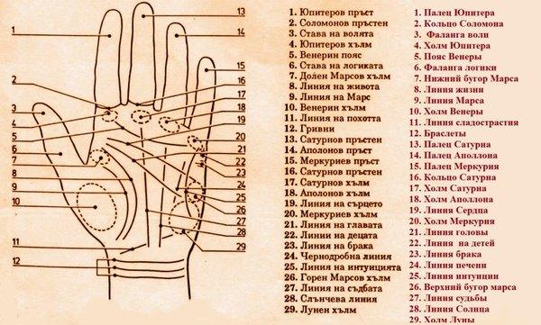 Карта руки