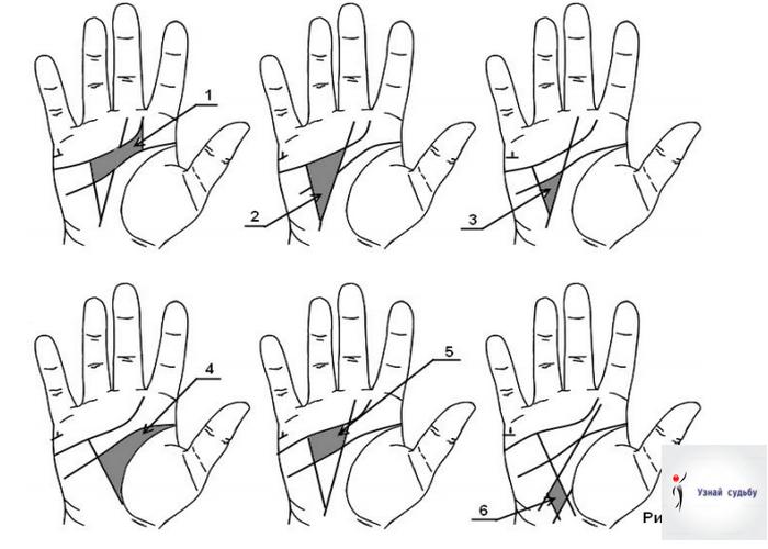 этом знаменитость редкие знаки на руках в картинках эксперимента подойдет простая