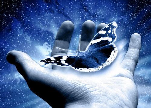 «Талантливые» руки