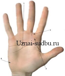 Гадание по руке, линия головы и мистический крест