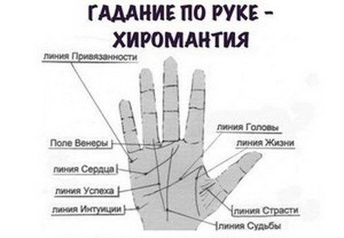 Как определять по руке свою судьбу 8